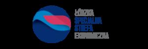 Logosy Obszar roboczy 1 kopia 5 300x100 - Edycja w Łodzi 2018